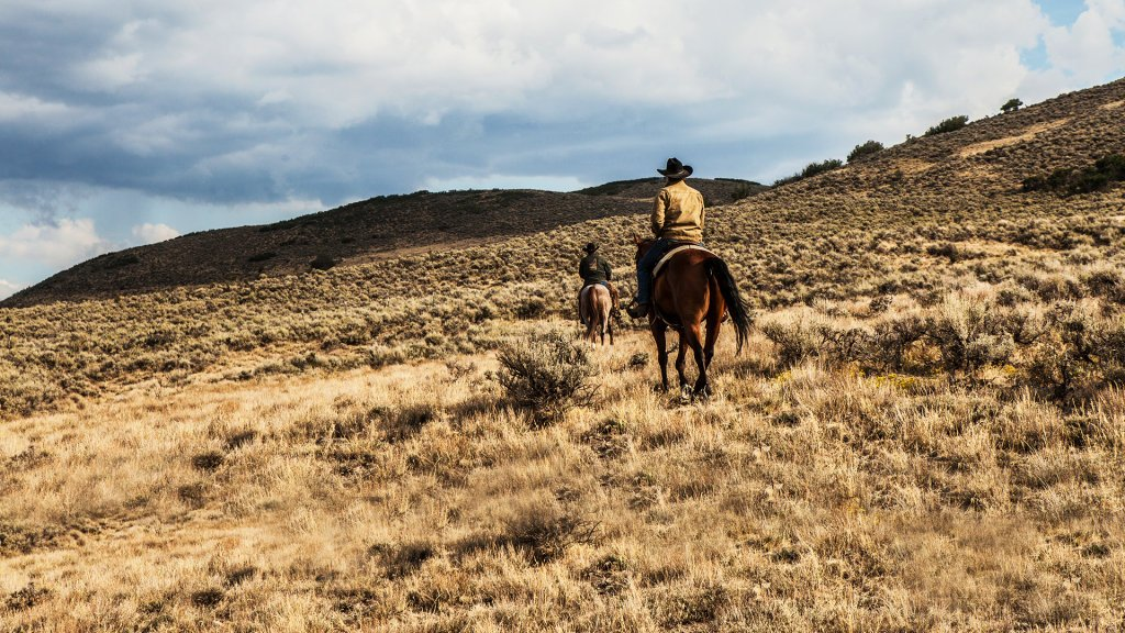Football, 'Yellowstone' & 'This Is Us' Top Lists Of Most Watched & Time-Shifted Linear TV Programs In 2020